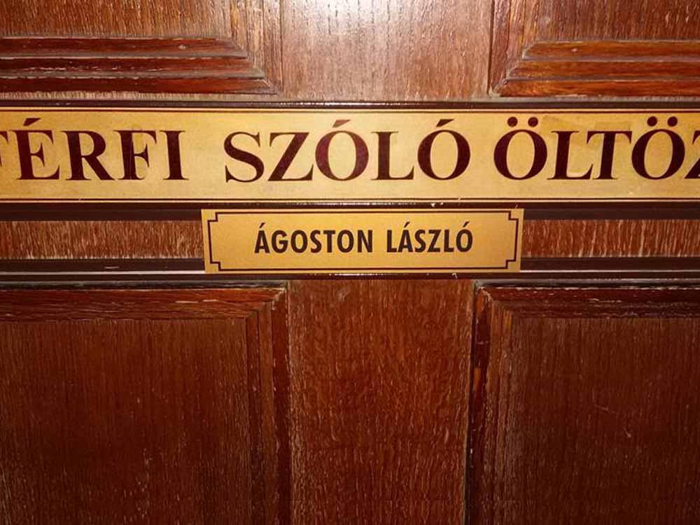 Agoston-Laszlo-bio13
